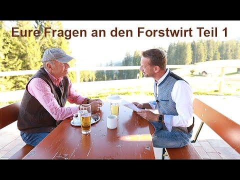 Experten-Talk: Eure Fragen Teil 1: Grundwasser, gießen, Borkenkäfer, Fichte, Waldumbau, Waldbrand